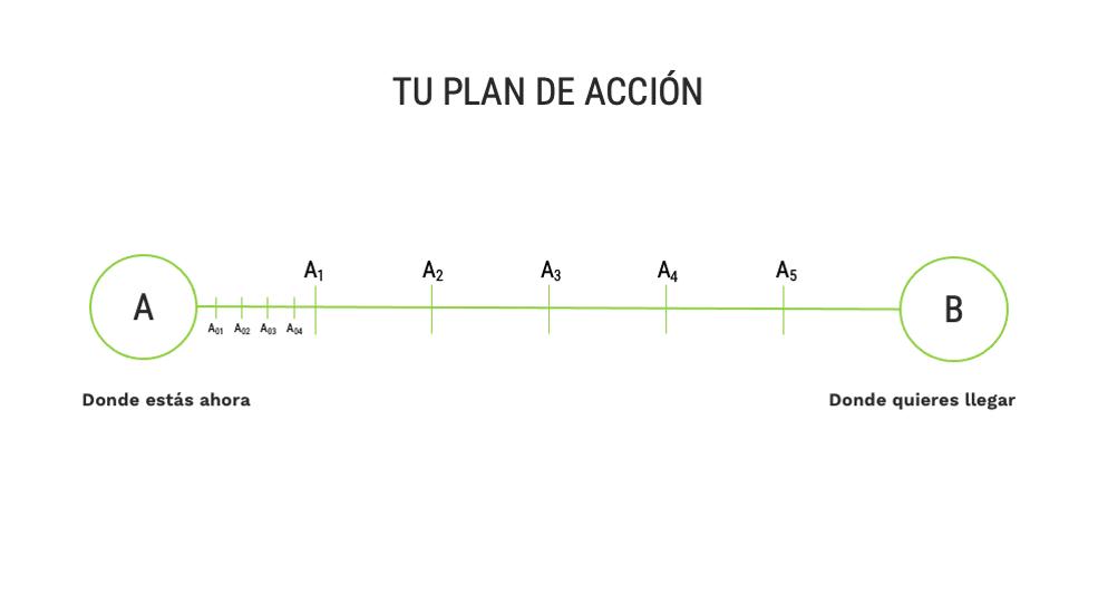 Organiza un plan de acción